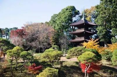 thumbnail_椿山荘_convert_20170824175544